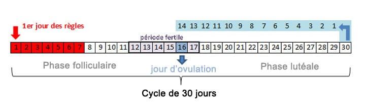 connaitre son cycle menstruel pour choisir sa contraception