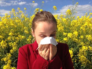 Les allergies sont très fréquentes en France, comment les soigner ?
