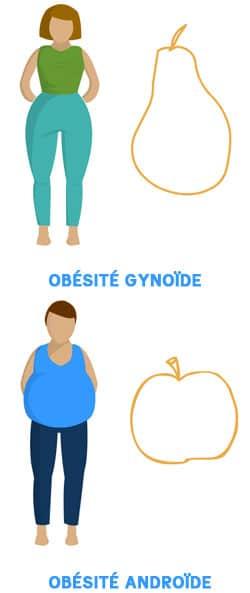 Les 2 types d'obésités différentes: gynoïde et androïde