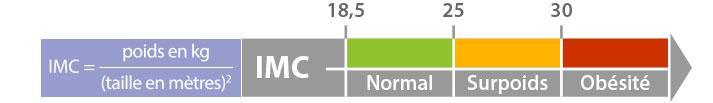 Calcul de l'IMC Indice de Masse Corporelle