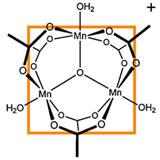 Le Manganèse aide l'organisme à assimiler les graisses et le sucre