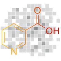 Vitamine B3 (Niacine) pour une érection durable