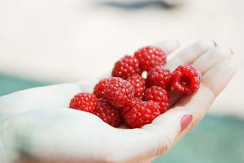 Comment fonctionne le Raspberry Ketone Max ?